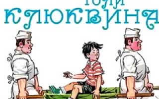Приключения Толи Клюквина – краткое содержание рассказа Носова (сюжет произведения)
