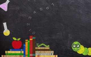 Сочинение на тему Школьные годы чудесные 4, 6, 9, 11 класс