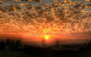Незнайка в Солнечном городе – краткое содержание книги Носова (сюжет произведения)