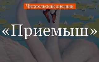 План рассказа Приемыш (Мамин-Сибиряк 4 класс)