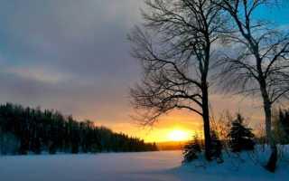 Зимняя сказка – сочинение