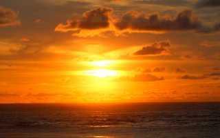 Сочинение Что такое верность Родине?