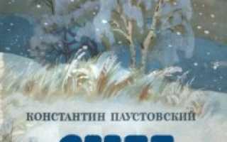 Снег – краткое содержание рассказа Паустовского (сюжет произведения)