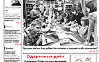 План рассказа Чинк Сетон-Томпсона