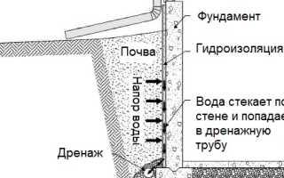 Анализ романа Житейские воззрения кота Мурра Гофмана