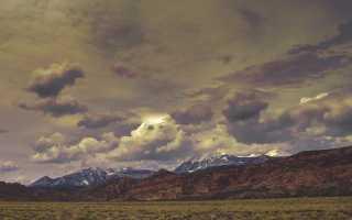 Тема и образ природы в лирике Сергея Есенина
