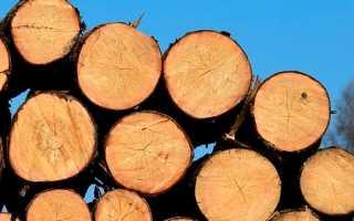 Сочинение по пословице Бесполезно носить дрова в лес 7 класс рассуждение