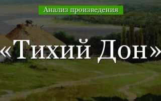 Своеобразие романа Тихий Дон Шолохова