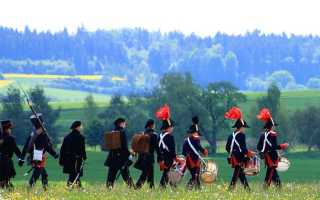Образ и характеристика Наполеона в романе Война и мир Толстого