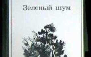 Белая радуга – краткое содержание рассказа Паустовского (сюжет произведения)