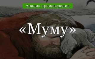Сочинение Лекарь Харитон в рассказе Муму Тургенева