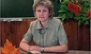 Анализ рассказа Шукшина Гринька Малюгин