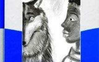 Глаз волка – краткое содержание книги Пеннака (сюжет произведения)