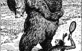 Зеркало и обезьяна – краткое содержание басни Крылова (сюжет произведения)