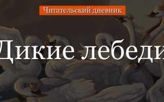 Анализ сказки Дикие лебеди Андерсена