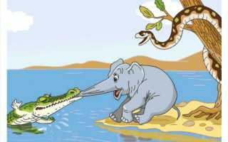 Слоненок – краткое содержание сказки Киплинга (сюжет произведения)