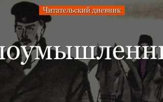 Злоумышленник – краткое содержание рассказа Чехова (сюжет произведения)