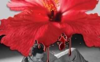 Кровавая свадьба – краткое содержание трагедии Лорки (сюжет произведения)