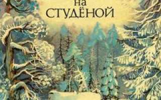 Зимовье на Студёной – краткое содержание рассказа Мамина-Сибиряка (сюжет произведения)