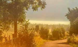 Природа в повести Ася Тургенева (описание и роль пейзажа)