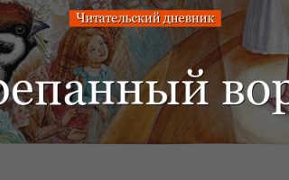 Отзыв о рассказе Растрепанный воробей Паустовского