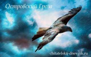 Отзыв о пьесе Гроза Островского для читательского дневника