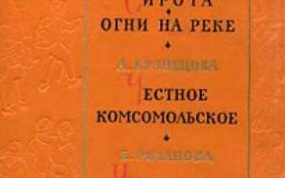 Сирота – краткое содержание книги Дубова (сюжет произведения)