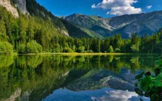 Сочинение по сказке Хозяйка Медной горы Бажова