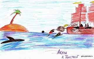 Акула – краткое содержание рассказа Толстого (сюжет произведения)